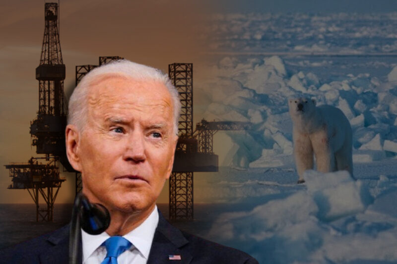 Climate & Wildlife Preservation: Biden suspends Trump approved Arctic oil drilling leases