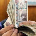 egypt's new budget