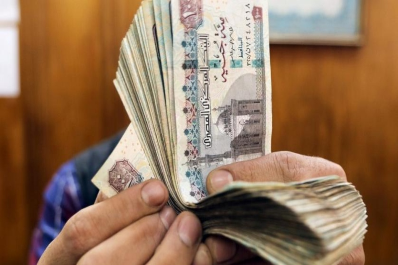 Egypt's new budget focusses on investment in Healthcare and Education sector