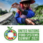 Gulf Nations vow Food Security feat during UN Food Systems Summit